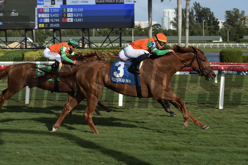 Magic Star wins the 2020 Marshua's River Stakes at Gulfstream Park<br /> Coglianese Photos/Lauren King