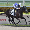 Restofthestory - Maiden Win, Gulfstream Park, August 28, 2020 <br /> First winner for Jess's Dream<br /> Coglianese Photos/Ryan Thompson