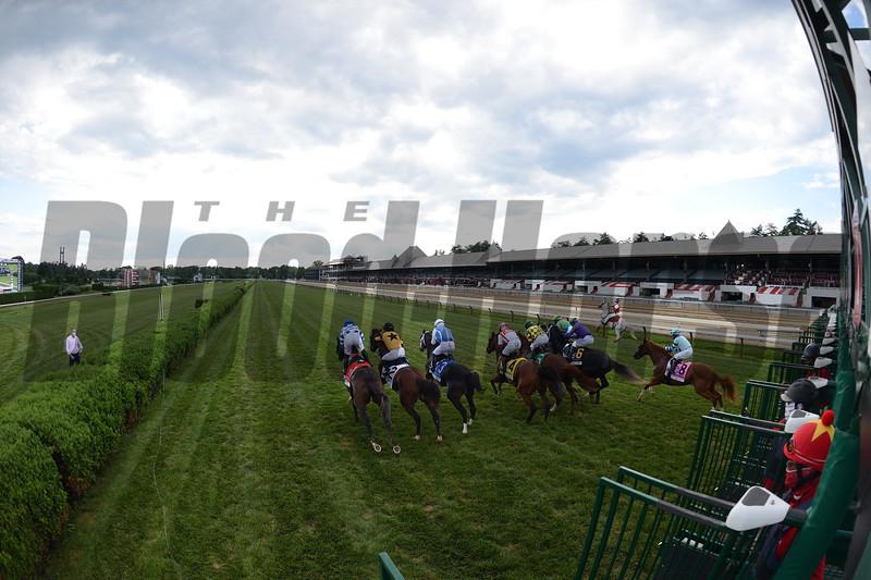 Domestic Spending wins the Saratoga Derby Invitational Saturday, August 15, 2020 at Saratoga Race Course. Photo: Coglianese Photos/Chelsea Durand