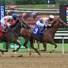 Palace Avenger - ALW, Saratoga, July 16, 2020<br /> Coglianese Photos