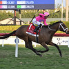 Zulu Alpha wins the 2020 Pegasus World Cup Turf Invitational<br /> Coglianese Photos/Susie Raisher
