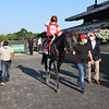 Instilled Regard wins the 2020 Manhattan Stakes at Belmont Park<br /> Coglianese Photos
