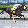 Spartanka - AOC, Gulfstream Park, May 25, 2020<br /> Coglianese Photos/Lauren King