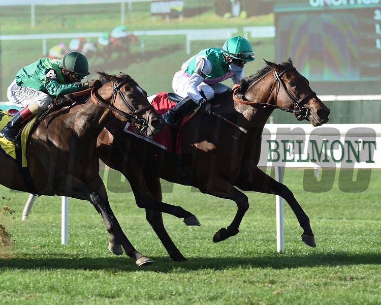 Viadera wins the 2020 Noble Damsel Stakes at Belmont Park<br /> Coglianese Photos