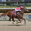 Vekoma wins the 2020 Sir Shackleton at Gulfstream Park<br /> Coglianese Photos/Lauren King