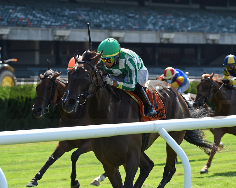 Civil Union wins the River Memories Stakes Sunday, July 12, 2020 at Belmont Park. Photo: Coglianese Photos/Chelsea Durand