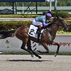 Golden Ami - Maiden Win, Gulfstream Park, March 13, 2020<br /> Coglianese Photos/Lauren King