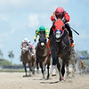 Kicks On Sixty Six - Maiden Win, Gulfstream Park, August 28, 2020<br /> Coglianese Photos/Ryan Thompson