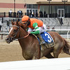 Forza Di Oro wins the Discovery Stakes at Aqueduct<br /> Coglianese Photos/Chelsea Durand