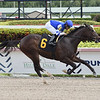 Four Grands - Maiden Win, Gulfstream Park, March 8, 2020<br /> Coglianese Photos/Lauren King