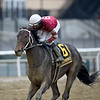 Bankit wins the 2020 Alex M. Robb Stakes at Aqueduct<br /> Coglianese Photos/Chelsea Durand