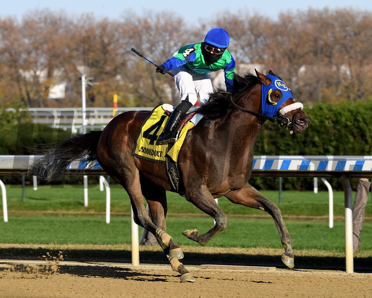 Eagle Orb wins the 2020 Notebook Stakes at Aqueduct<br /> Coglianese Photos/Chelsea Durand