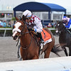 Tiz the Law wins the Grade 1 Florida Derby on 3/28/20 at Gulfstream Park.  Manuel Franco up.