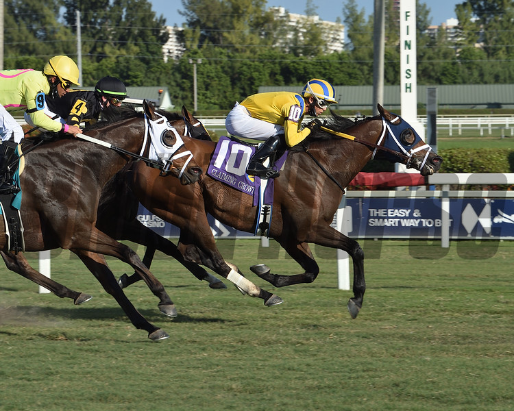 High Noon Rider wins the 2020 Claiming Crown Emerald Stakes<br /> Coglianese Photos/Lauren King