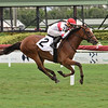 Spanish Loveaffair - Maiden Win, Gulfstream Park, July 23, 2020<br /> Coglianese Photos/Lauren King