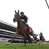 Tamahere wins the 2020 Sands Point Stakes at Belmont Park<br /> Coglianese Photos