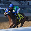 Eagle Orb wins the 2020 Notebook Stakes at Aqueduct<br /> Coglianese Photos/Joe Labozzetta