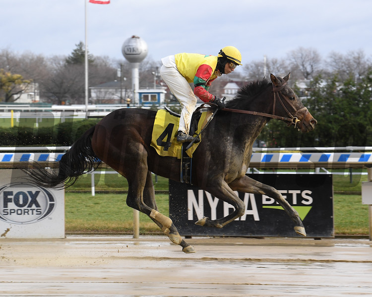Out First - Maiden Win, Aqueduct, December 5, 2020<br /> Coglianese Photos