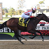 Complexity wins the 2020 Kelso Stakes at Belmont Park<br /> Coglianese Photos/Susie Raisher