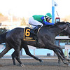 Water White wins the 2020 Busher Stakes at Aqueduct<br /> Coglianese Photos/Annette Jasko