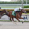 Double Crown wins the 2020 Carry Back Stakes at Gulfstream Park<br /> Coglianese Photos/Lauren King