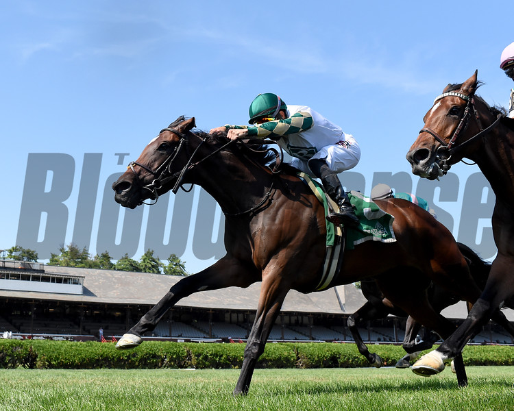Feel Glorious wins the 2020 Perfect Sting Stakes at Saratoga<br /> Coglianese Photos/Chelsea Durand