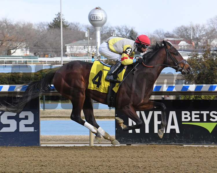 The Last Ace wins a maiden special weight Feb. 29, 2020 at Aqueduct Racetrack. Photo: Coglianese Photos
