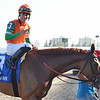 Magic Star wins the 2020 Marshua's River Stakes at Gulfstream Park<br /> Coglianese Photos/Ryan Thompson