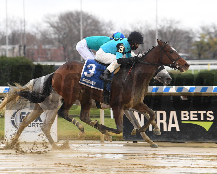 Brooklyn Strong wins the 2020 Remsen Stakes at Aqueduct<br /> Coglianese Photos/Janet Garaguso
