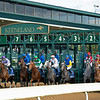 Breaking from gate, #7 Simply Ravishing.<br /> Simply Ravishing with Luis Saez wins the Darley Alcibiades (G1) at Keeneland.<br /> Opening day of the Keeneland fall meeting on October 2, 2020.
