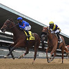 No Mo' Spending wins the 2020 Joseph A. Gimma Stakes at Belmont Park<br /> Coglianese Photos/Chelsea Durand