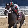 Firenze Fire wins the 2020 True North Stakes at Belmont Park<br /> Coglianese Photos/Joe Labozzetta
