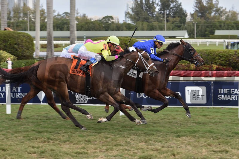 Carotari wins the 2020 Silks Run Stakes at Gulfstream Park<br /> Coglianese Photos/Lauren King