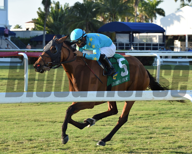 Queens Embrace wins the 2020 Claiming Crown Tiara Stakes<br /> Coglianese Photos/Derbe Glass