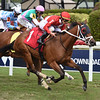 Bajan Girl - Maiden Win, Gulfstream Park, March 8, 2020<br /> Coglianese Photos/Ryan Thompson