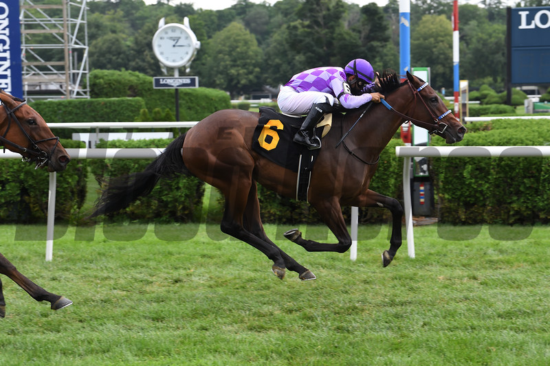 Simply Ravishing wins maiden special weight Sunday, August 2, 2020 at Saratoga. Photo: Coglianese Photos