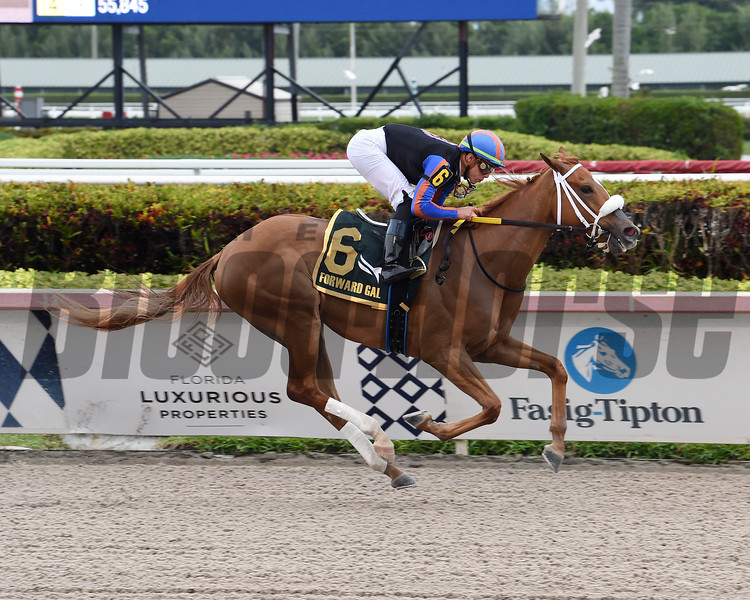 Tonalist's Shape wins the 2020 Forward Gal Stakes at Gulfstream Park<br /> Coglianese Photos