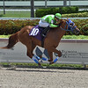Papetu - Maiden Win, Gulfstream Park, June 20, 2020<br /> Coglianese Photos/Lauren King