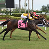 Aziza - Maiden win, Gulfstream Park, December 6, 2020<br /> Coglianese Photos/Lauren King