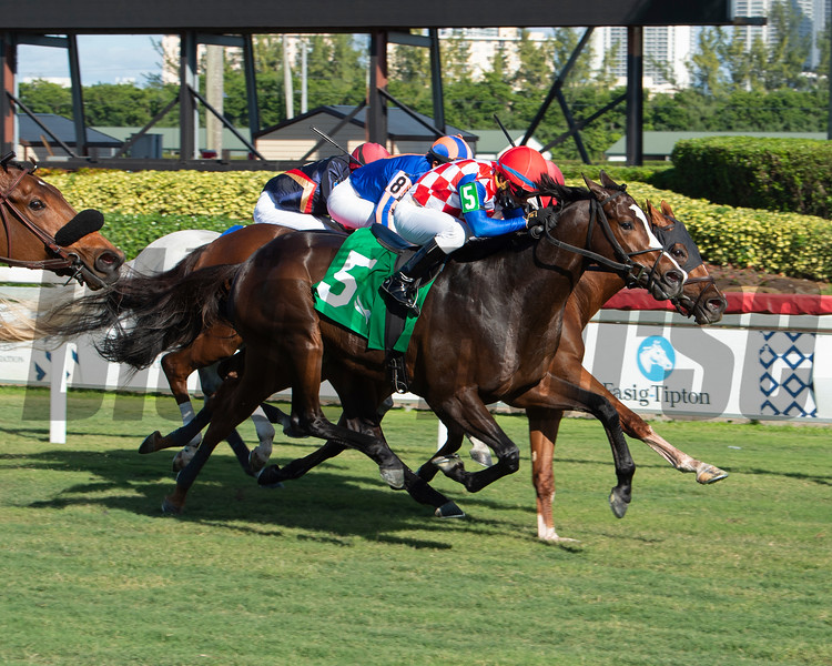 Break Beat - Maiden Win, Gulfstream Park, December 2, 2020<br /> Coglianese Photos/Ryan Thompson