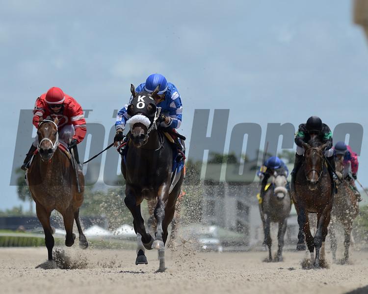 Casalsa wins a maiden claiming race June 27, 2020 at Gulfstream Park. Photo: Coglianese Photos/Ryan Thompson