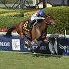 Mean Mary wins the 2020 Orchid Stakes at Gulfstream Park   <br /> Coglianese Photos/Ryan Thompson
