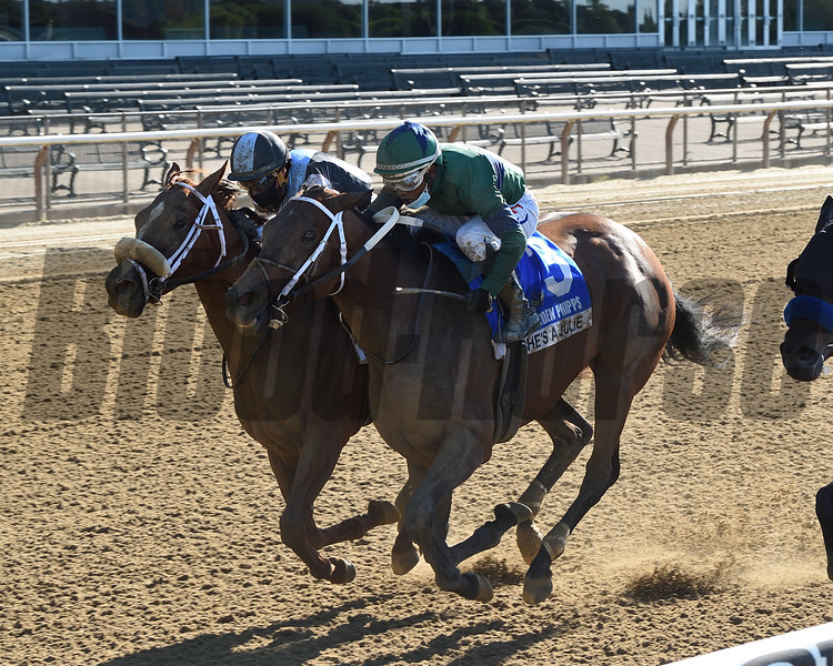 She's a Julie wins the 2020 Ogden Phipps Stakes<br /> Coglianese Photos/Chelsea Durand
