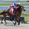 Hyperfocus - Maiden Win, Gulfstream Park, May 9, 2020<br /> Coglianese Photos/Ryan Thompson