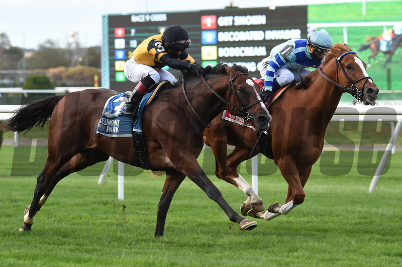 Get Smokin wins the Hill Prince Stakes Sunday, October 18, 2020 at Belmont Park. Photo: Coglianese Photos