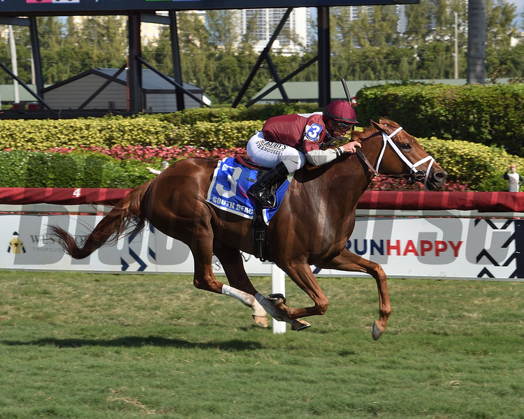 Atomic Blonde wins the 2020 South Beach Stakes at Gulfstream Park<br /> Coglianese Photos/Lauren King