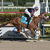 Tonalist's Shape wins the 2020 Davona Dale Stakes at Gulfstream Park<br /> Coglianese Photos
