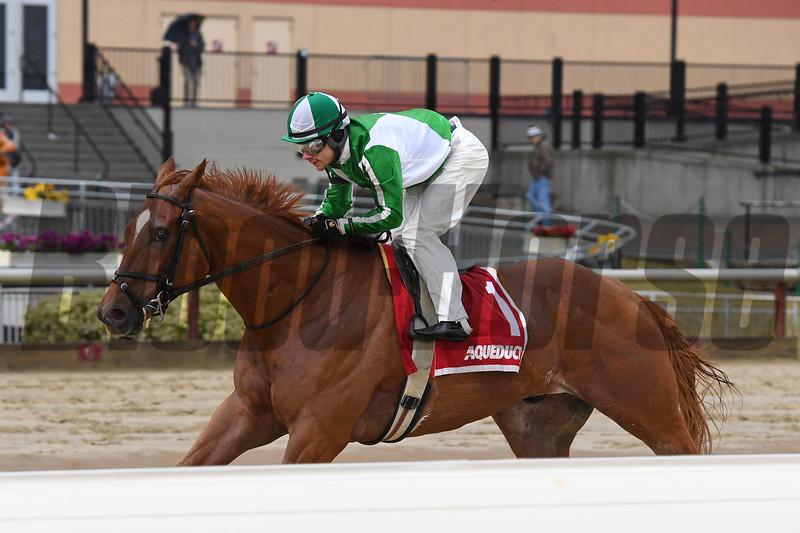 Mr. Buff wins the 2020 Jazil Stakes at Aqueduct<br /> Coglianese Photos/Joe Labozzetta