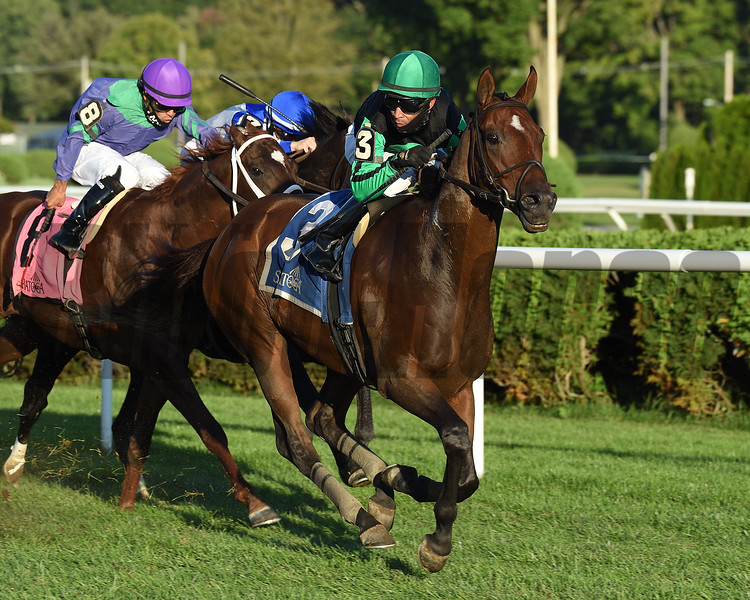 Battle Station wins the Lucky Coin Stakes Sunday, September 6, 2020 at Saratoga Race Course. Photo: Coglianese Photos