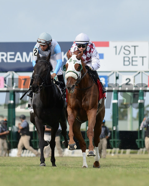 Niko's Dream wins the 2020 My Charmer Stakes at Gulfstream Park<br /> Coglianese Photos/Ryan Thompson